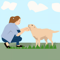 3 Common Principles For Successful Dog Training