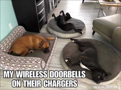 My wifi doorbells on their chargers